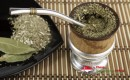 Yerba Mate Tea Singapore, Where to Buy and Save