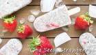 Chia Seed Recipe – Chia Seed, Strawberry & CoconutPopsicles