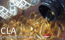 CLA (Conjugated Linoleic Acid) Singapore