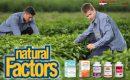 Natural Factors Singapore